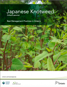 Japanese Knotweed Best Management Practice